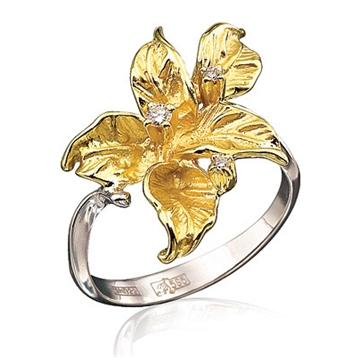Сонник золотое кольцо.